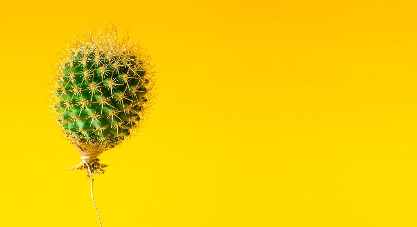 Palloncino cactus su sfondo giallo brillante.