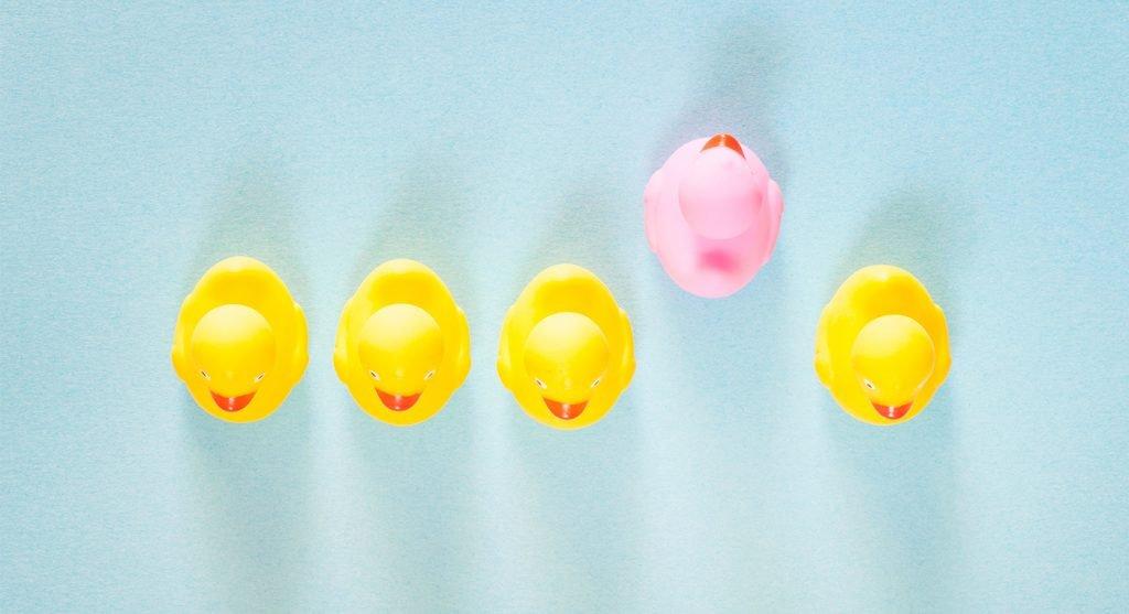 Una paperella di gomma rosa che si distingue da quelle gialle comuni.